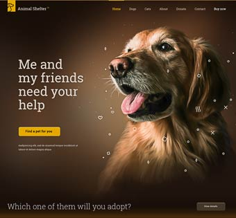 animal shelter web development project